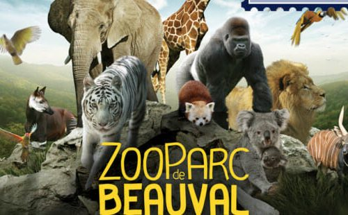 web-zoo-parc-beauval-c2a9-zoo-parc-de-beauval-2